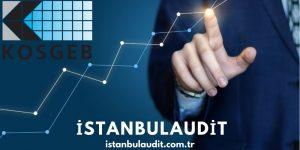 Kosgeb Destekleri   İleri girişimci destek programi   İstanbul Audit